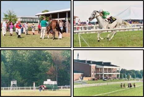 Kentucky Downs1, Issue2 pic 1