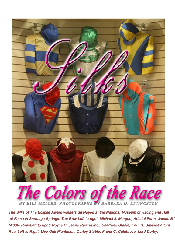 TS Issue 2 The colors of the race art work Bex